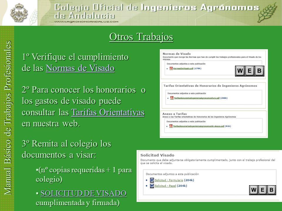 Manual Básico de Trabajos Profesionales FINALIZACIÓN DE LOS TRABAJOS (I) ¿Ha finalizado la obra.