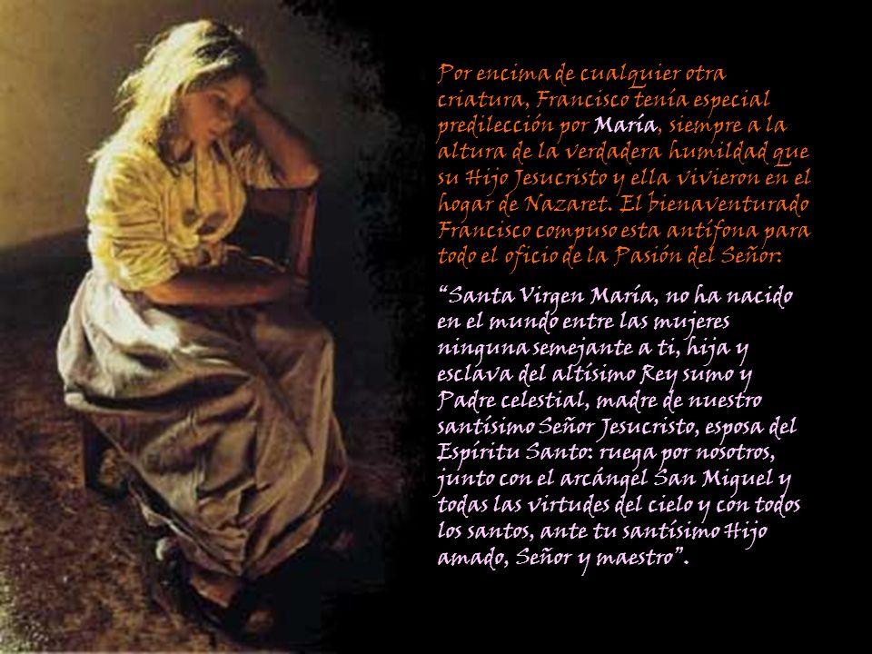 Por encima de cualquier otra criatura, Francisco tenía especial predilección por María, siempre a la altura de la verdadera humildad que su Hijo Jesuc