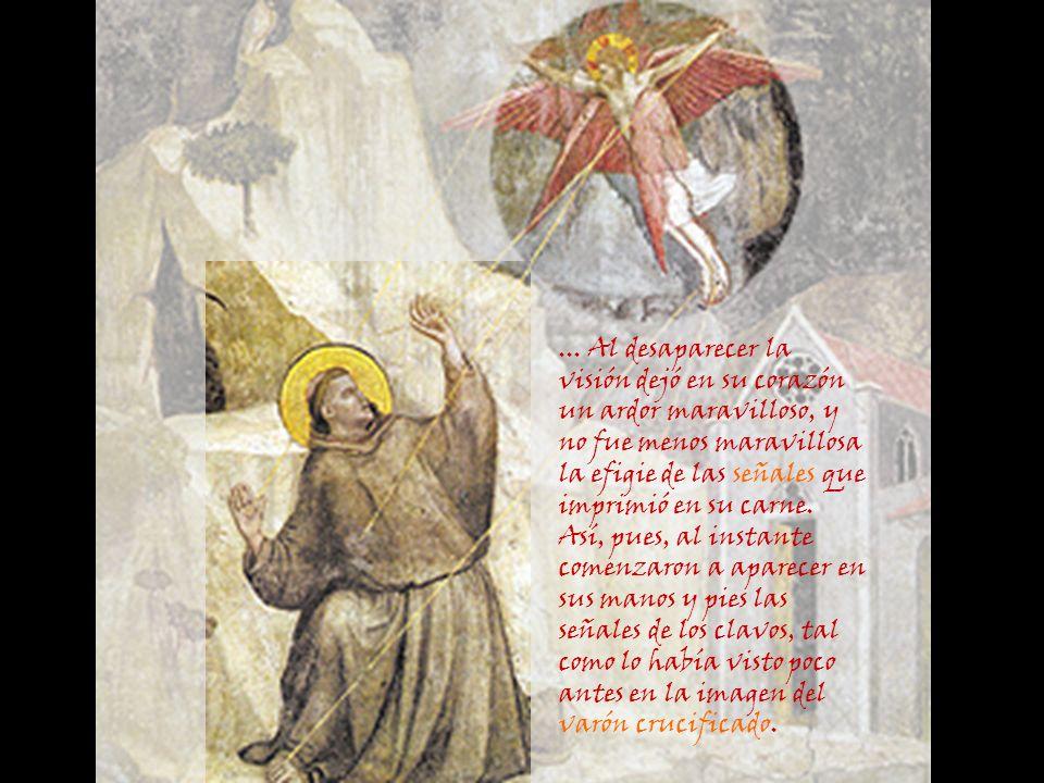 En vuelo rapidísimo avanzó hacia el lugar donde se encontraba el varón de Dios, deteniéndose en el aire. Apareció entonces entre las alas la efigie de