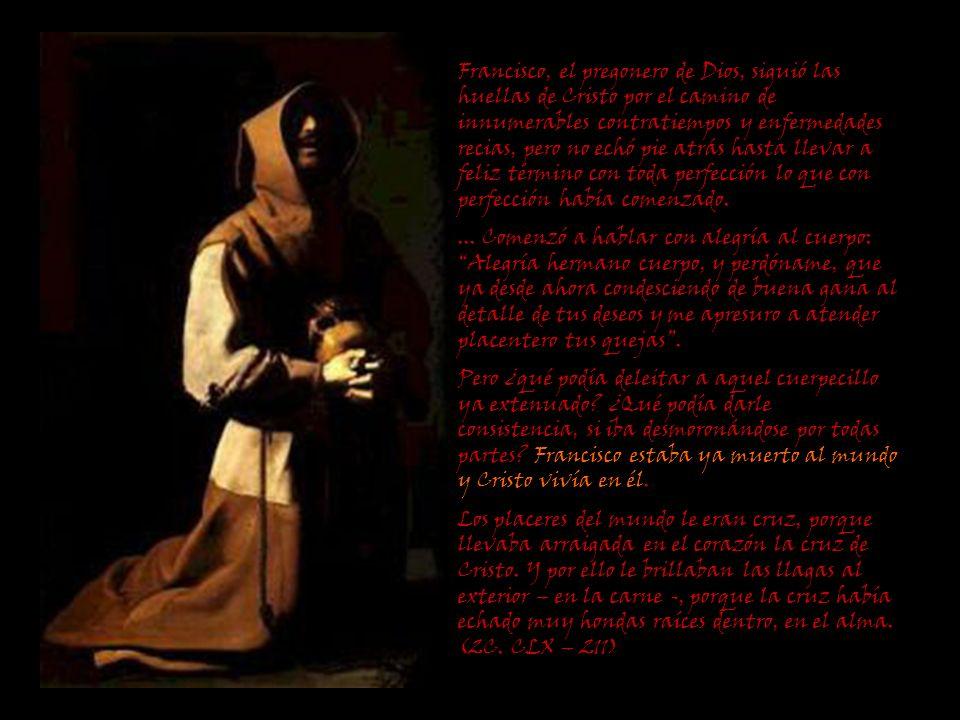 Francisco, el pregonero de Dios, siguió las huellas de Cristo por el camino de innumerables contratiempos y enfermedades recias, pero no echó pie atrá