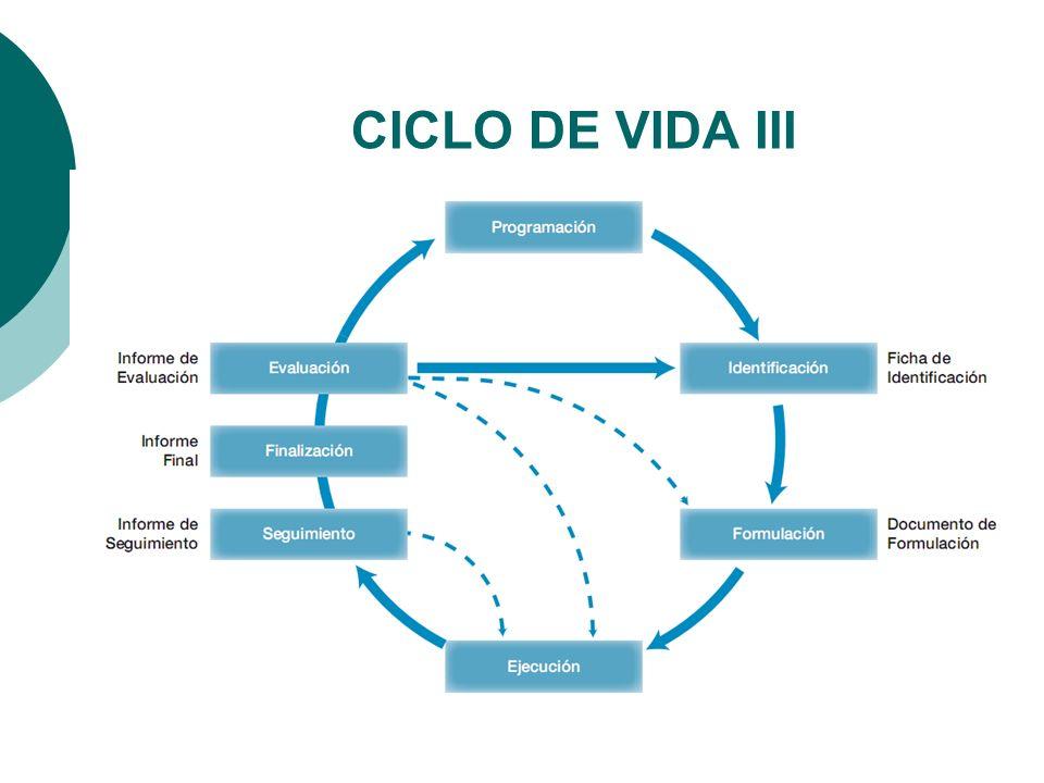 CICLO DE VIDA III