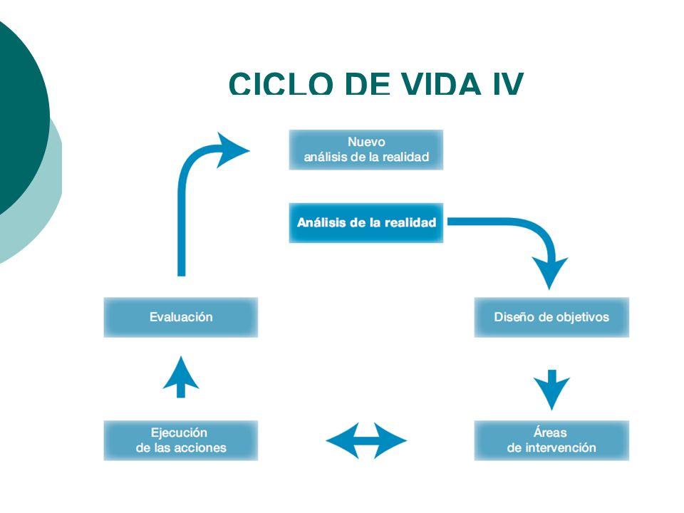 CICLO DE VIDA IV