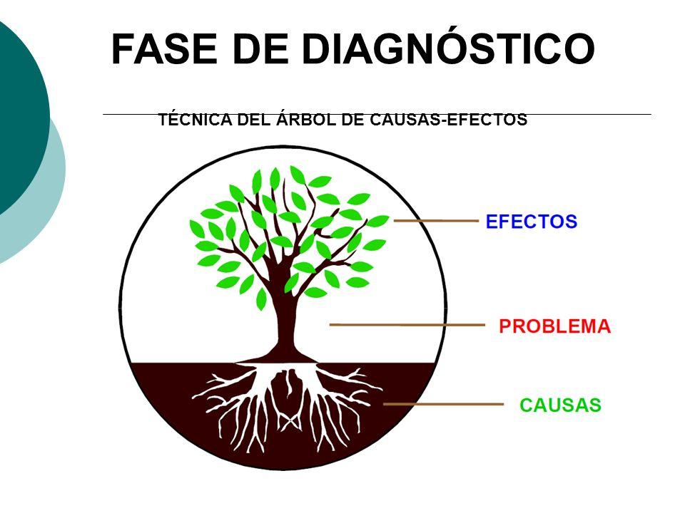 TÉCNICA DEL ÁRBOL DE CAUSAS-EFECTOS FASE DE DIAGNÓSTICO