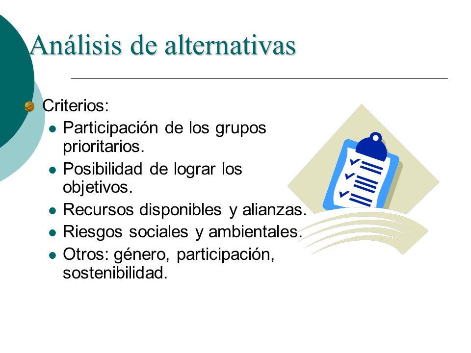 Análisis de alternativas Criterios: Participación de los grupos prioritarios. Posibilidad de lograr los objetivos. Recursos disponibles y alianzas. Ri