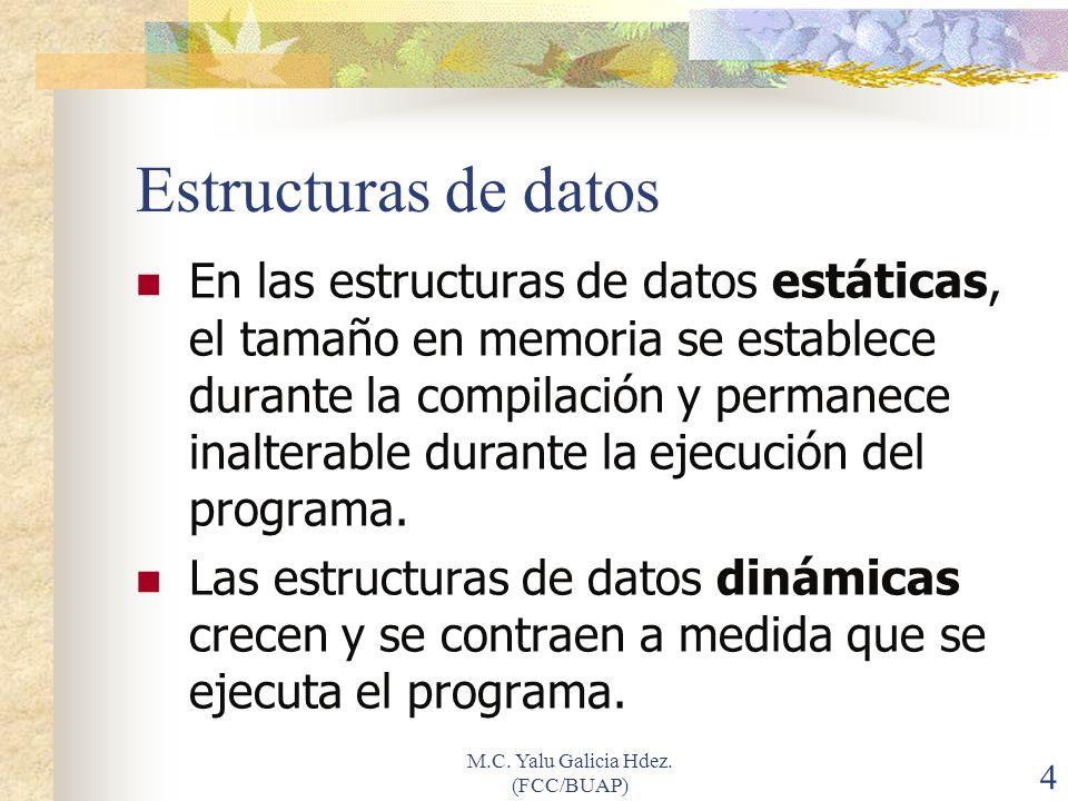 M.C. Yalu Galicia Hdez. (FCC/BUAP) 45 ¿Que aprendimos?