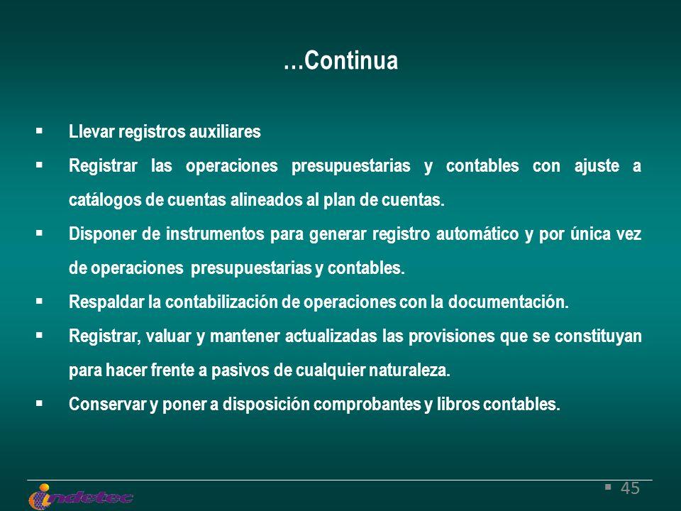 45 Llevar registros auxiliares Registrar las operaciones presupuestarias y contables con ajuste a catálogos de cuentas alineados al plan de cuentas.