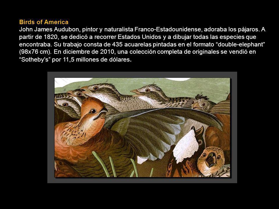 Birds of America John James Audubon, pintor y naturalista Franco-Estadounidense, adoraba los pájaros.