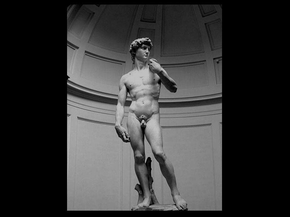 El David lo esculpe Miguel Ángel entre 1501 y 1504 por encargo de la Cooperativa de Mercaderes de la lana de Florencia. Para su realización emplea un