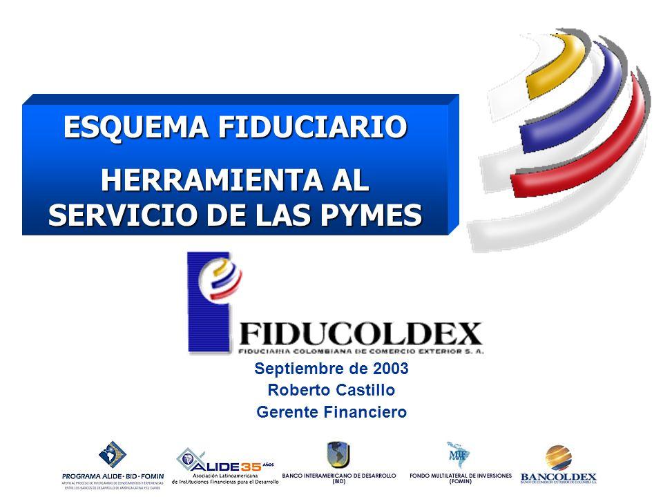 1 ESQUEMA FIDUCIARIO HERRAMIENTA AL SERVICIO DE LAS PYMES Septiembre de 2003 Roberto Castillo Gerente Financiero