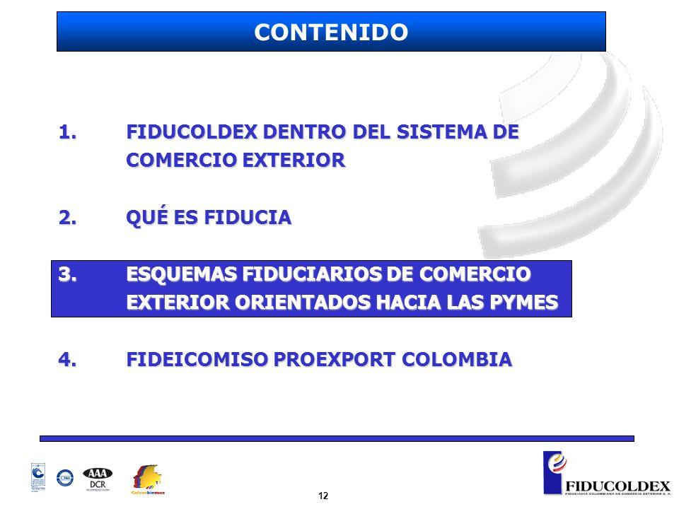 12 1. FIDUCOLDEX DENTRO DEL SISTEMA DE COMERCIO EXTERIOR 2.QUÉ ES FIDUCIA 3.ESQUEMAS FIDUCIARIOS DE COMERCIO EXTERIOR ORIENTADOS HACIA LAS PYMES 4.FID