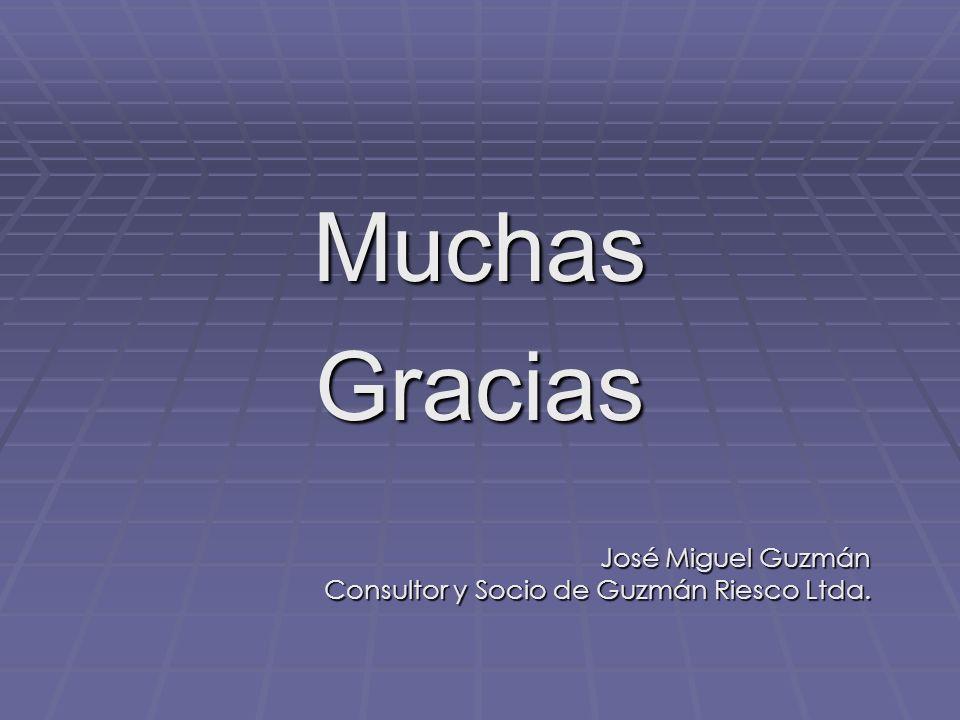 MuchasGracias José Miguel Guzmán Consultor y Socio de Guzmán Riesco Ltda.