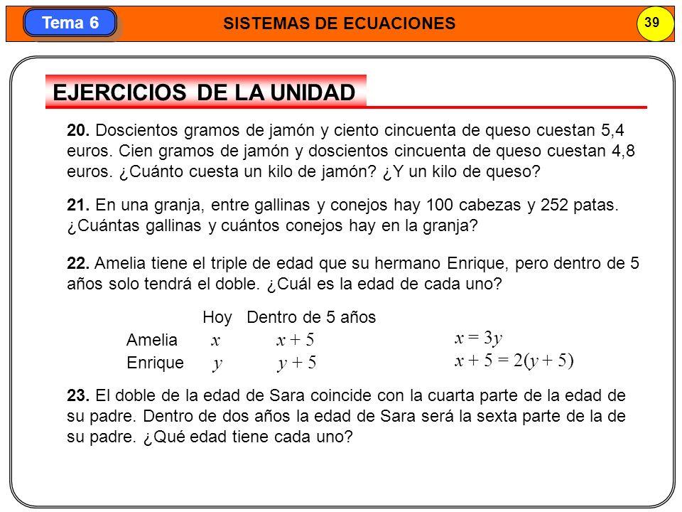 SISTEMAS DE ECUACIONES 40 Tema 6 25.