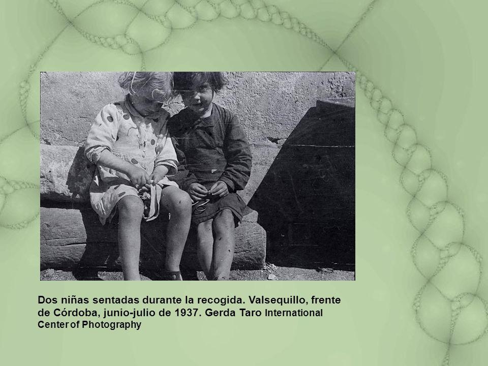 Dos niñas sentadas durante la recogida. Valsequillo, frente de Córdoba, junio-julio de 1937. Gerda Taro International Center of Photography