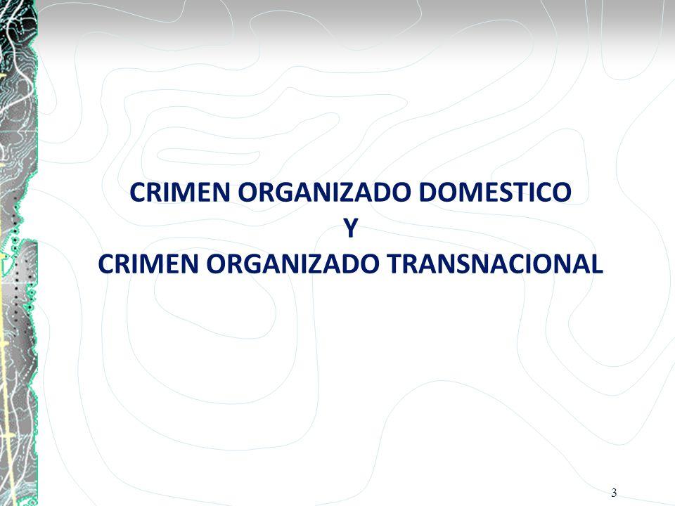 CRIMEN ORGANIZADO DOMESTICO Y CRIMEN ORGANIZADO TRANSNACIONAL 3