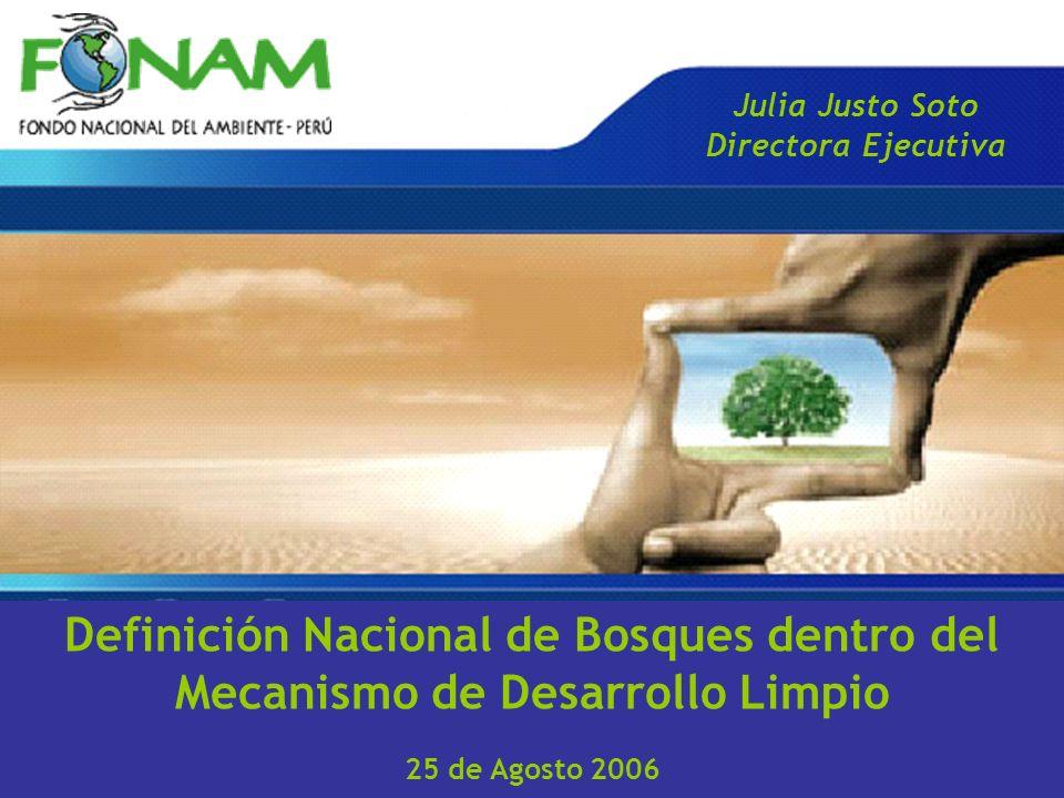 Definición Nacional de Bosques dentro del Mecanismo de Desarrollo Limpio 25 de Agosto 2006 Julia Justo Soto Directora Ejecutiva