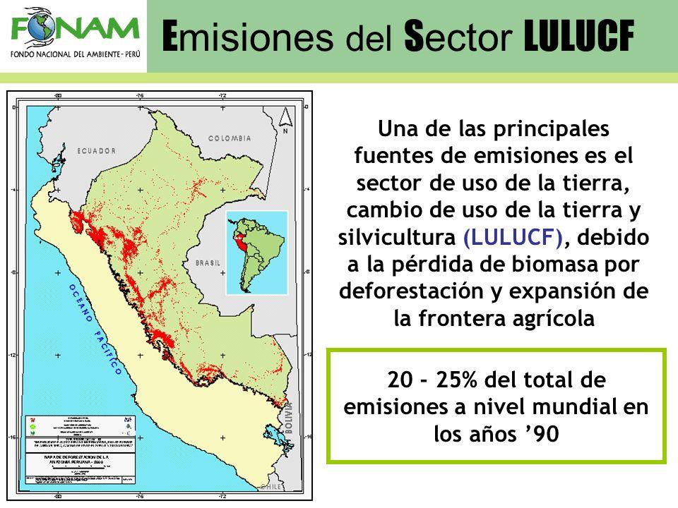 E misiones del S ector LULUCF 20 - 25% del total de emisiones a nivel mundial en los años 90 Una de las principales fuentes de emisiones es el sector