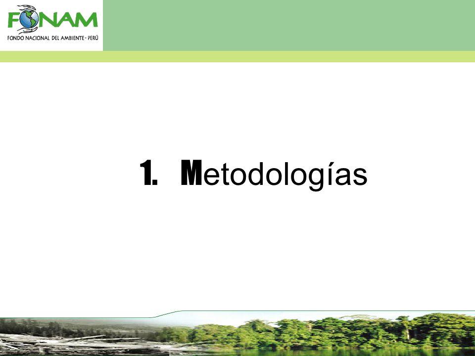 1. M etodologías