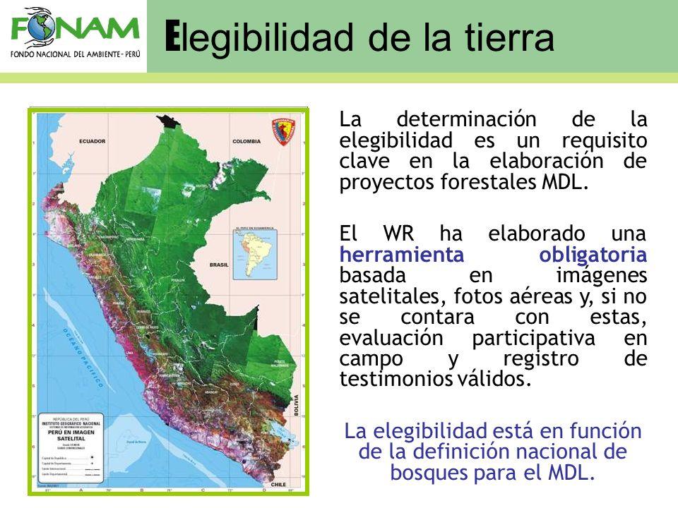 E legibilidad de la tierra La determinación de la elegibilidad es un requisito clave en la elaboración de proyectos forestales MDL. El WR ha elaborado