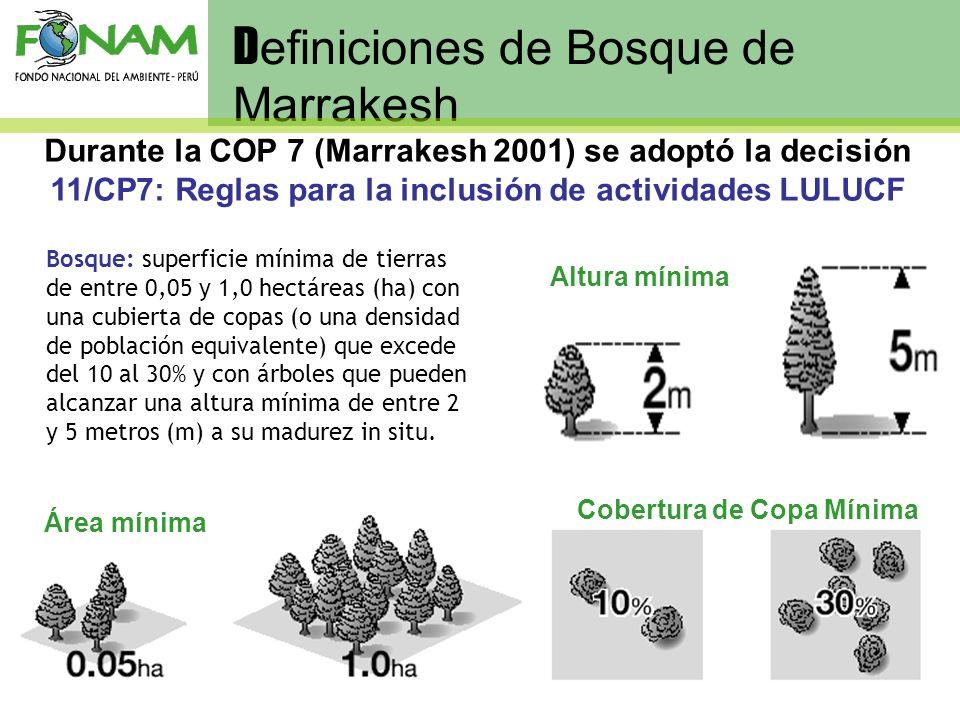D efiniciones de Bosque de Marrakesh Cobertura de Copa Mínima Altura mínima Área mínima Bosque: superficie mínima de tierras de entre 0,05 y 1,0 hectá