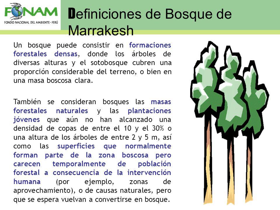 Un bosque puede consistir en formaciones forestales densas, donde los árboles de diversas alturas y el sotobosque cubren una proporción considerable d