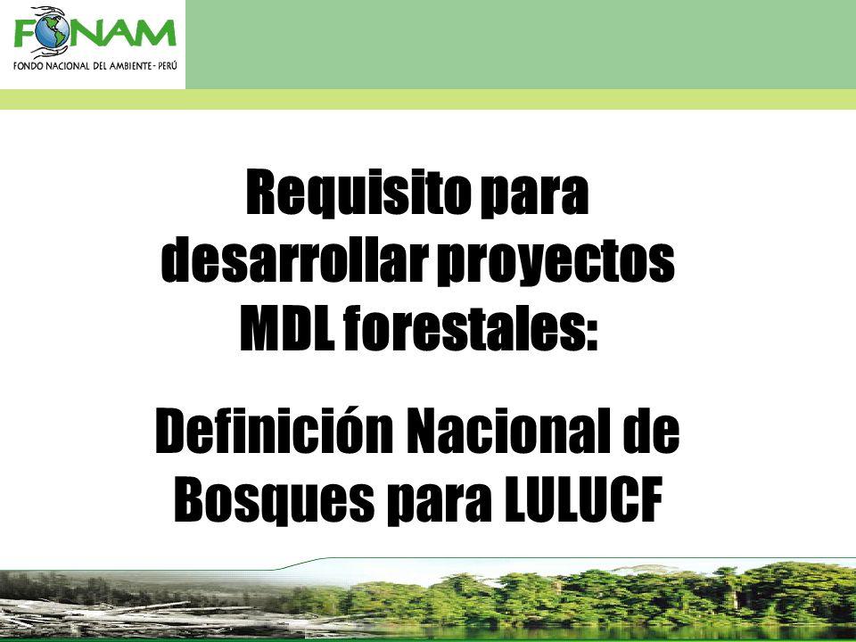Requisito para desarrollar proyectos MDL forestales: Definición Nacional de Bosques para LULUCF