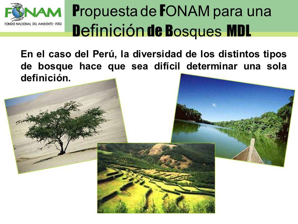 En el caso del Perú, la diversidad de los distintos tipos de bosque hace que sea difícil determinar una sola definición. P ropuesta de F ONAM para una
