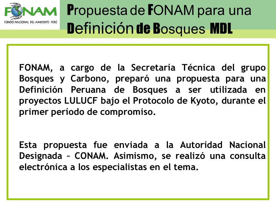 FONAM, a cargo de la Secretaría Técnica del grupo Bosques y Carbono, preparó una propuesta para una Definición Peruana de Bosques a ser utilizada en p