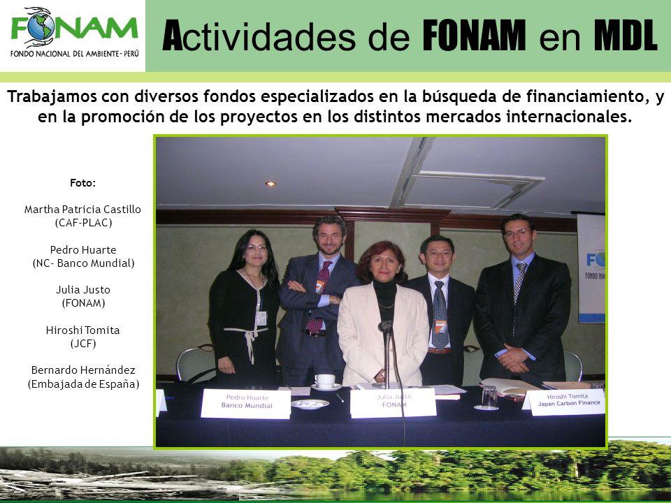 A ctividades de FONAM en MDL Foto: Martha Patricia Castillo (CAF-PLAC) Pedro Huarte (NC- Banco Mundial) Julia Justo (FONAM) Hiroshi Tomita (JCF) Berna