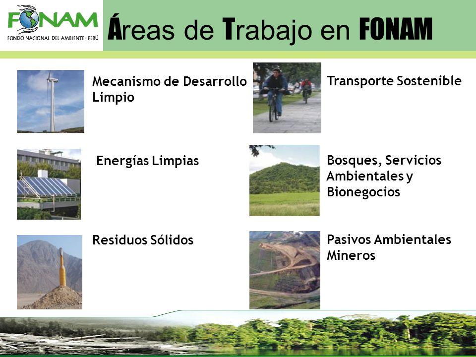 Transporte Sostenible Bosques, Servicios Ambientales y Bionegocios Pasivos Ambientales Mineros Mecanismo de Desarrollo Limpio Energías Limpias Residuo