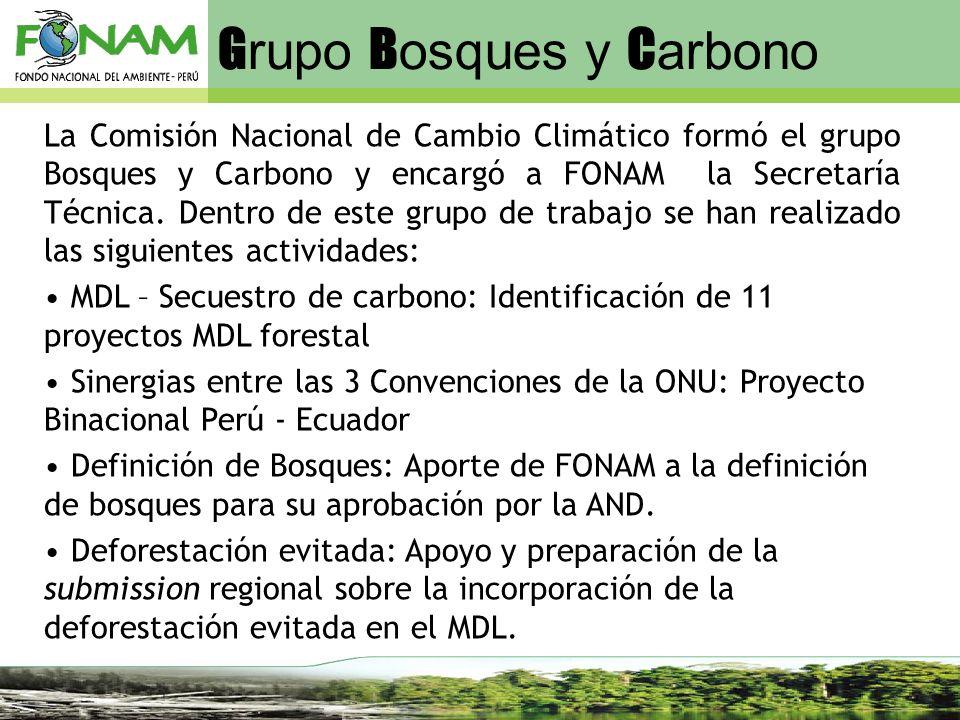 G rupo B osques y C arbono La Comisión Nacional de Cambio Climático formó el grupo Bosques y Carbono y encargó a FONAM la Secretaría Técnica. Dentro d
