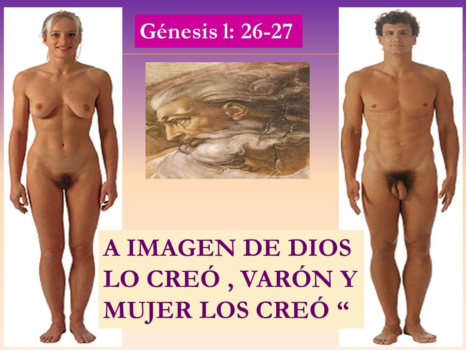 A IMAGEN DE DIOS LO CREÓ, VARÓN Y MUJER LOS CREÓ Génesis l: 26-27