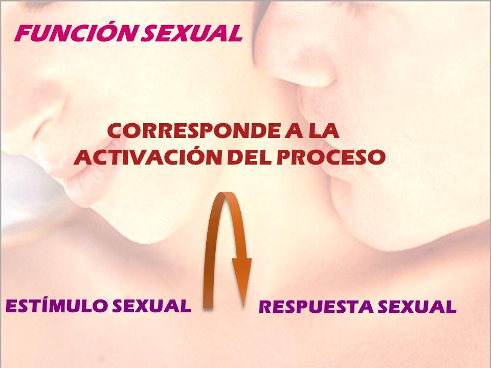 FUNCIÓN SEXUAL CORRESPONDE A LA ACTIVACIÓN DEL PROCESO RESPUESTA SEXUAL ESTÍMULO SEXUAL