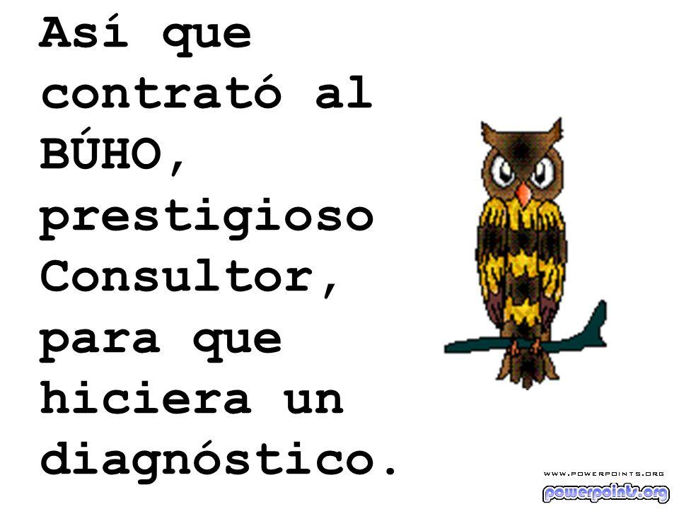 Así que contrató al BÚHO, prestigioso Consultor, para que hiciera un diagnóstico.