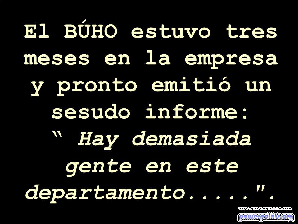 El BÚHO estuvo tres meses en la empresa y pronto emitió un sesudo informe: Hay demasiada gente en este departamento.....