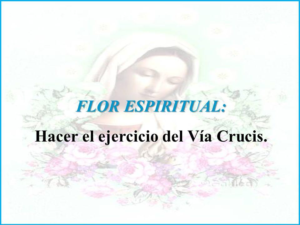 FLOR ESPIRITUAL: Hacer el ejercicio del Vía Crucis.