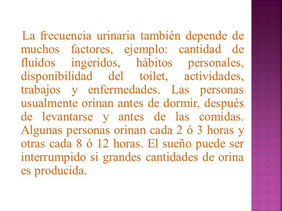 La frecuencia urinaria también depende de muchos factores, ejemplo: cantidad de fluídos ingeridos, hábitos personales, disponibilidad del toilet, acti