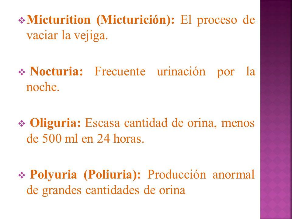 Micturition (Micturición): El proceso de vaciar la vejiga. Nocturia: Frecuente urinación por la noche. Oliguria: Escasa cantidad de orina, menos de 50