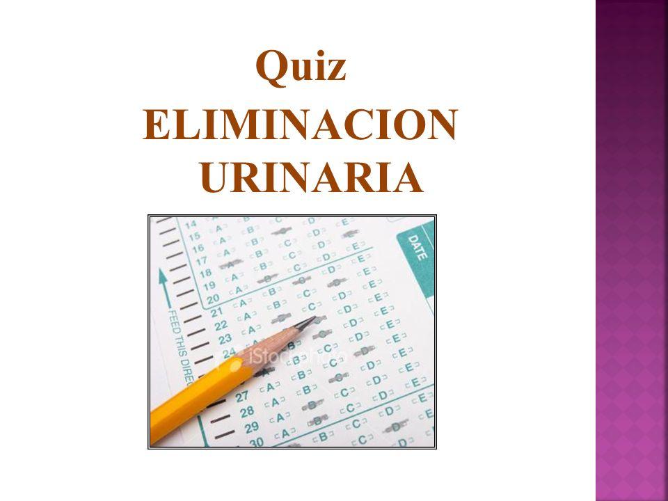 Quiz ELIMINACION URINARIA
