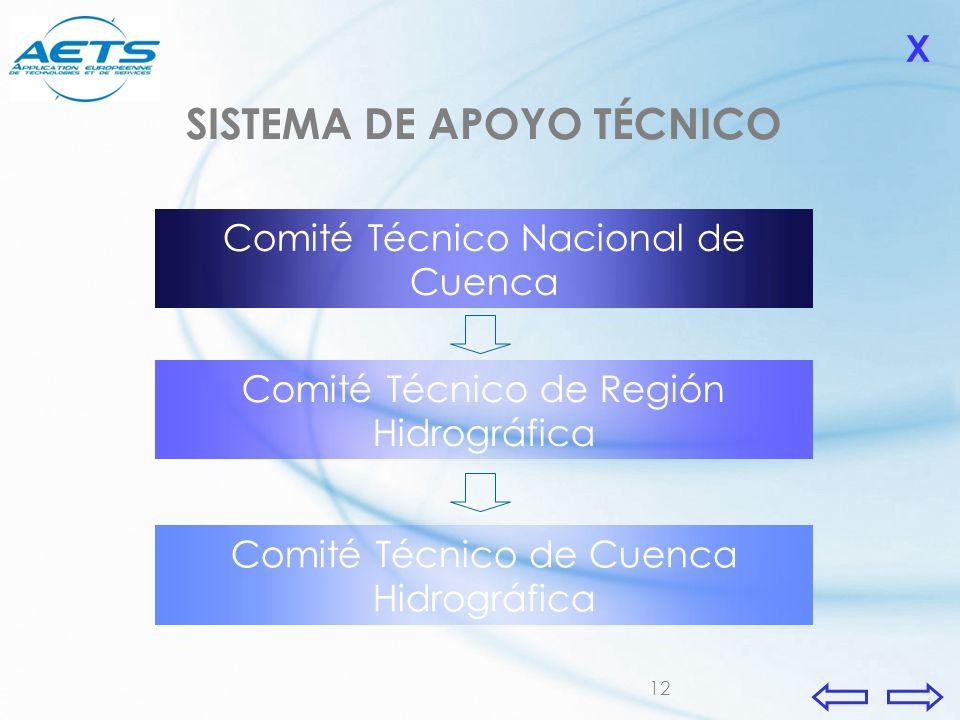 12 Comité Técnico de Región Hidrográfica Comité Técnico Nacional de Cuenca Comité Técnico de Cuenca Hidrográfica XXXX SISTEMA DE APOYO TÉCNICO
