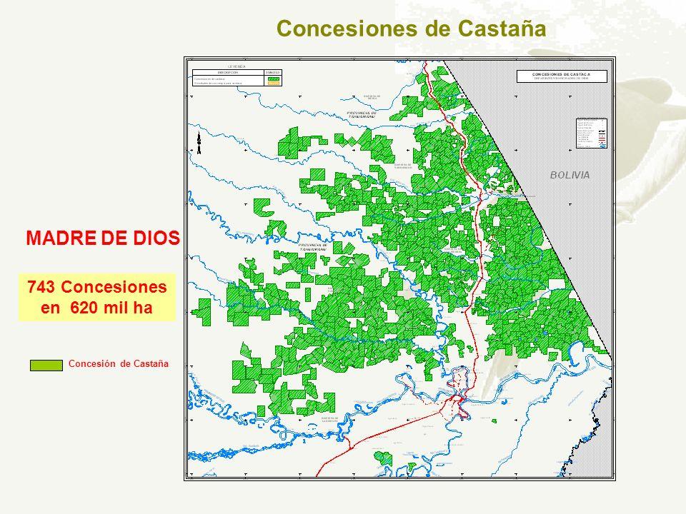 Concesiones de Castaña MADRE DE DIOS 743 Concesiones en 620 mil ha Concesión de Castaña