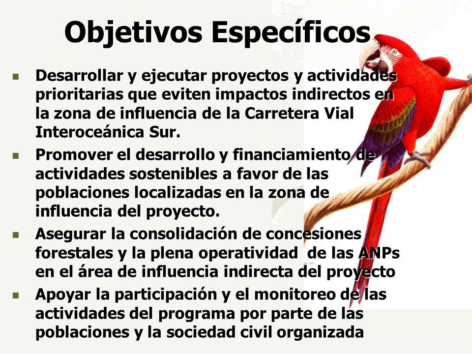 Objetivos Específicos Desarrollar y ejecutar proyectos y actividades prioritarias que eviten impactos indirectos en la zona de influencia de la Carret