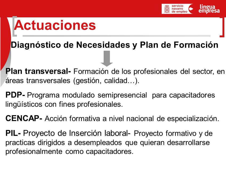 Actuaciones Diagnóstico de Necesidades y Plan de Formación Plan transversal- Formación de los profesionales del sector, en áreas transversales (gestión, calidad…).
