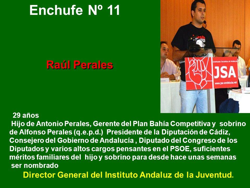 32 años- Apodado el pata. Hijo de Luis Pizarro, pensador y Vicesecretario General del PSOE de Andalucía (el cortijo de Chaves), mérito suficiente para