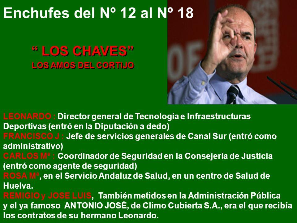 29 años Hijo de Antonio Perales, Gerente del Plan Bahía Competitiva y sobrino de Alfonso Perales (q.e.p.d.) Presidente de la Diputación de Cádiz, Cons