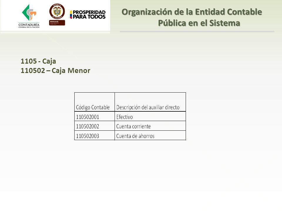 1105 - Caja 110502 – Caja Menor Organización de la Entidad Contable Pública en el Sistema