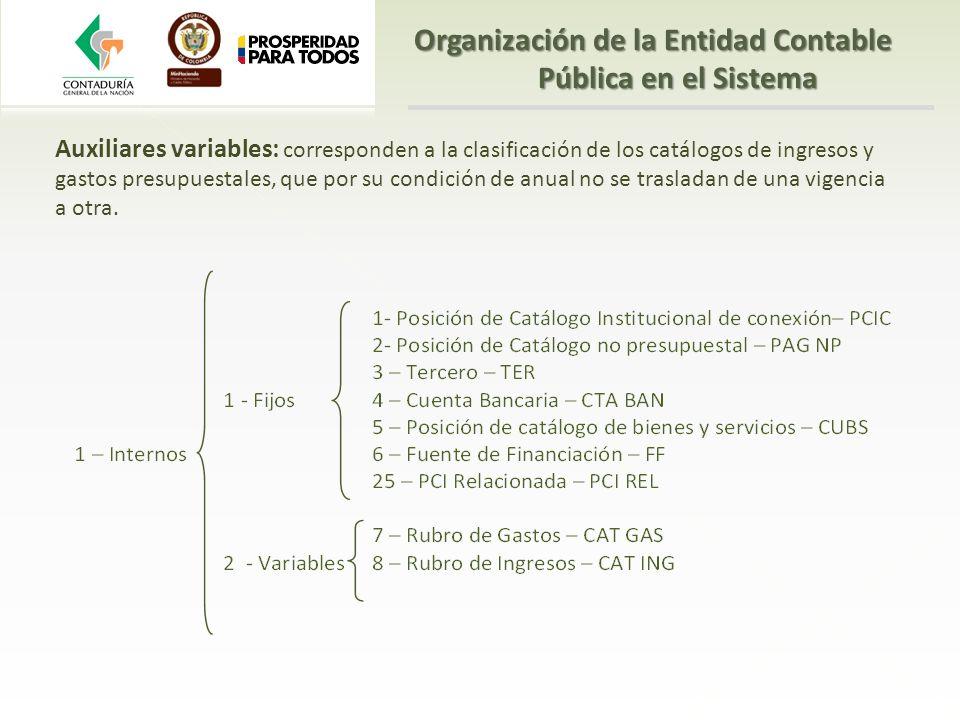 Auxiliares variables: corresponden a la clasificación de los catálogos de ingresos y gastos presupuestales, que por su condición de anual no se trasla