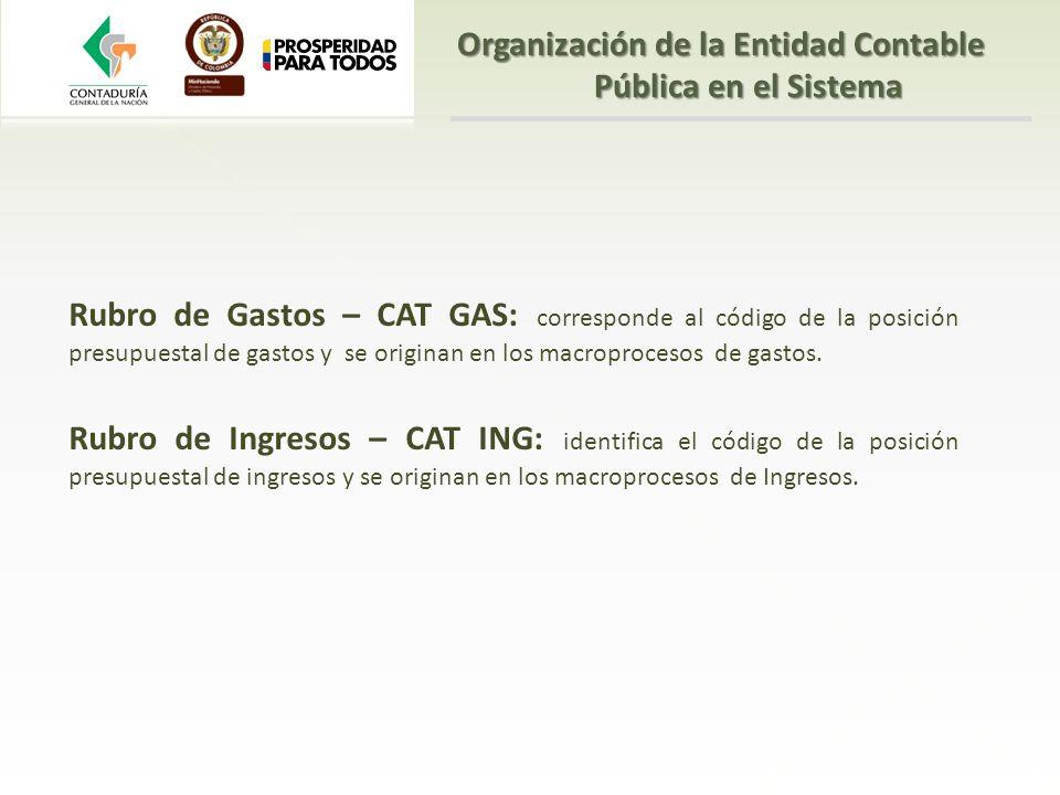 Rubro de Gastos – CAT GAS: corresponde al código de la posición presupuestal de gastos y se originan en los macroprocesos de gastos. Rubro de Ingresos