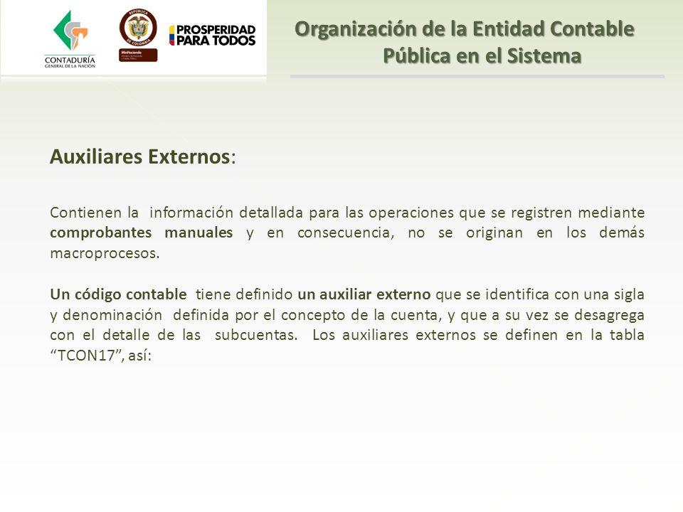 Auxiliares Externos: Contienen la información detallada para las operaciones que se registren mediante comprobantes manuales y en consecuencia, no se