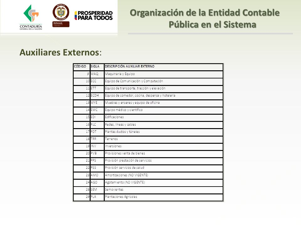 Auxiliares Externos: Organización de la Entidad Contable Pública en el Sistema