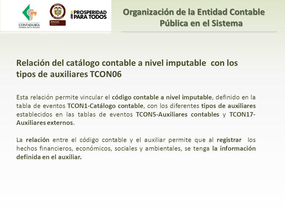 Relación del catálogo contable a nivel imputable con los tipos de auxiliares TCON06 Esta relación permite vincular el código contable a nivel imputabl
